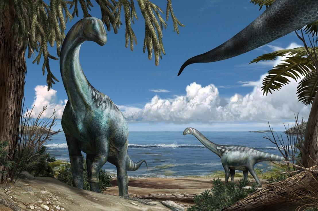 Quando dalle nostre parti c'era il mare e i dinosauri pascolavanobeati