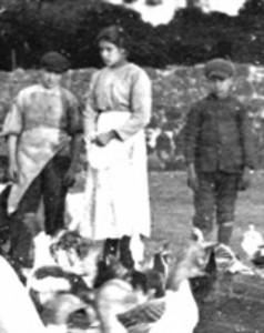 MariaGoretti_1902-238x300