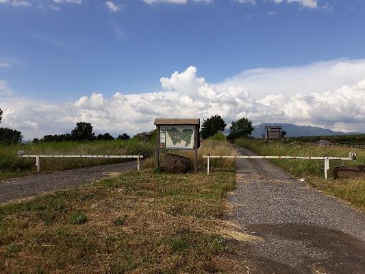 La Selva dei privati tra stallo e progetti di crescita, ancora chiuso l'ex ParcoUccelli