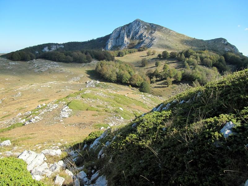 Monte Tarino foto di Domenico Serafini. Ufficio Naturalistico